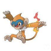 Pokémon GO - Monferno