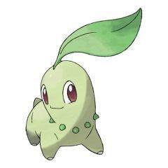 Chikorita Pokémon GO