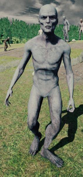 Canibal pálido delgado The Forest