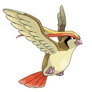 Pidgeot Pokémon GO