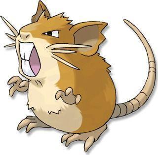 Raticate Pokémon GO