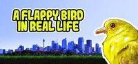 Portada oficial de A Flappy Bird in Real Life para PC