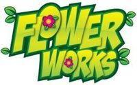 Portada oficial de Flowerworks: Follie's Adventure WiiW para Wii