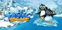 Portada oficial de Arctic Escape DSiW para NDS