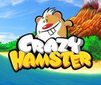 Portada oficial de Crazy Hamster DSiW para NDS