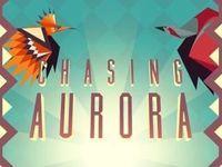 Portada oficial de Chasing Aurora eShop para Wii U