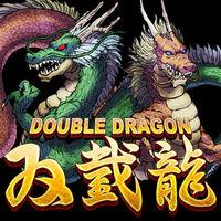 Portada oficial de Double Dragon para Android