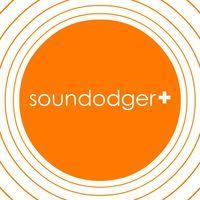 Portada oficial de Soundodger+ para PC