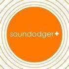 Portada oficial de de Soundodger+ para PC