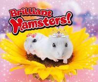 Portada oficial de Brilliant Hamsters! eShop para Nintendo 3DS