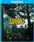 Portada oficial de de The Forest para PC