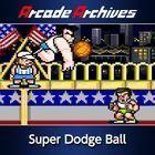 Portada oficial de de Arcade Archives: Super Dodge Ball para PS4
