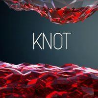 Portada oficial de Knot para PS4