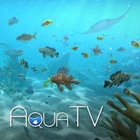 Portada oficial de Aqua TV eShop para Wii U