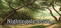 Portada oficial de Nightingale Downs para PC