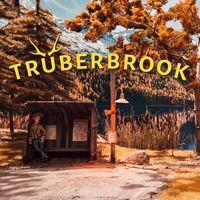 Portada oficial de Truberbrook para PS4