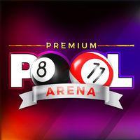 Portada oficial de Premium Pool Arena para Switch