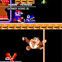 Portada oficial de Arcade Archives DONKEY KONG JR. para Switch