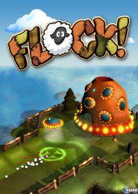 Portada oficial de Flock PSN para PS3